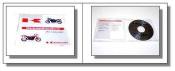 Kawasaki ZRX 1200, ZRX1200 A/B/C Werkstatthandbuch 2001 Reparaturanleitung