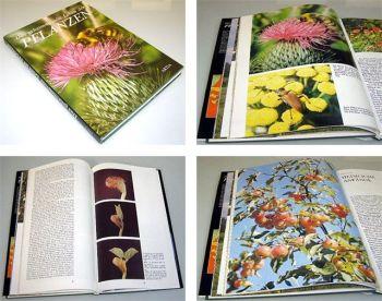 Das geheimnisvolle Leben der Pflanzen 1986