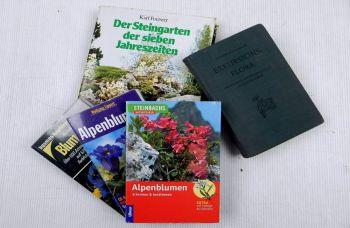 Naturführer Alpenblumen Exkursionsflora Steingarten Blumen Alpen