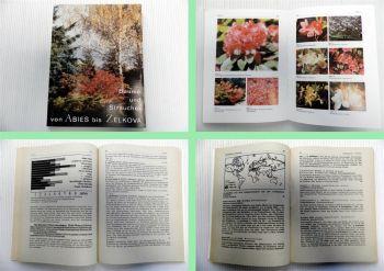 Bäume und Sträucher von Abies bis Zelkova 1989 Roland Schuster