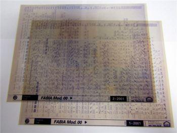 2 Stück Skoda Fabia ab 2000 Ersatzteilkatalog Microfich 2001