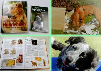 2 Bücher Hund Mein großes Hundebuch + Das große Spielebuch für Hunde