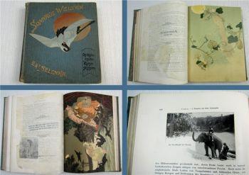 Sonnige Welten - Ostasiatische Reiseskizzen von E. & L. Selenka 1905