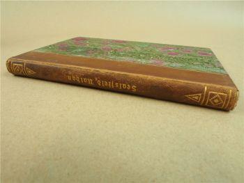 Nathan der Squatter Regulator von Charles Sealsfield ca 1910 Verlag Hendel Halle